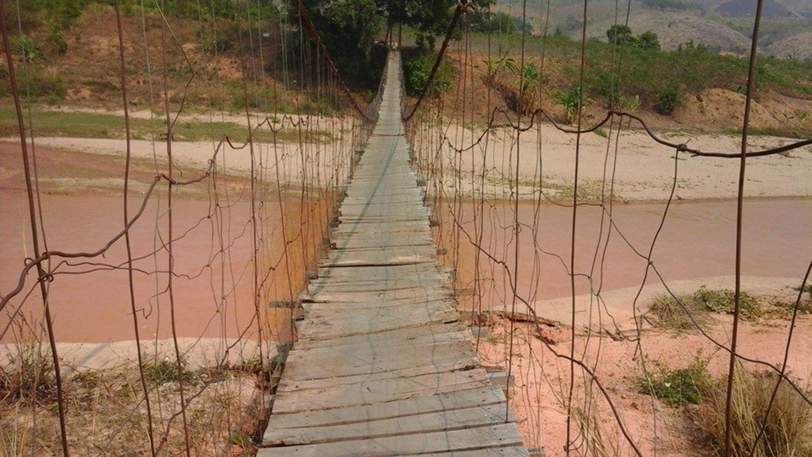 Monkey bridge