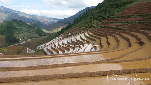 Mu Cang Chai tarrce rice field in pouring water time