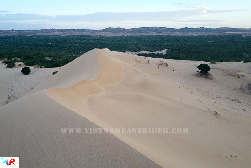White-sand-dune-muine