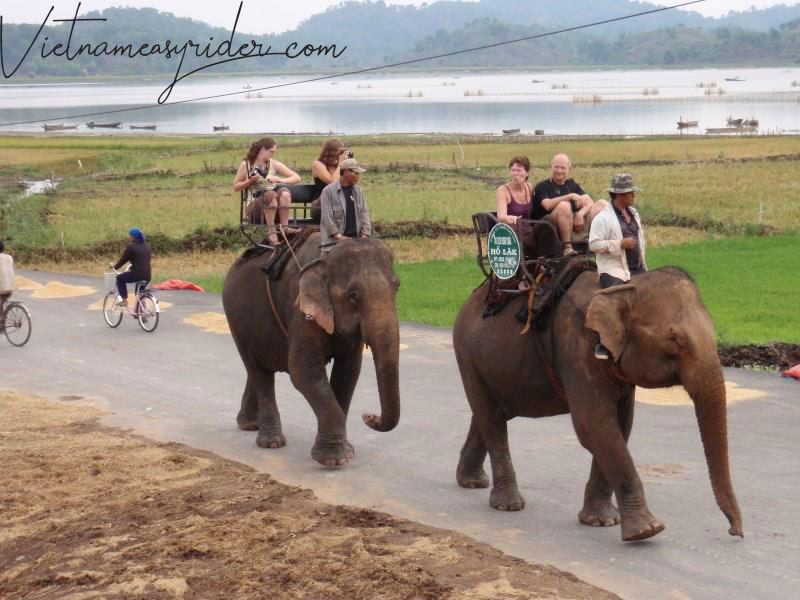 Elephant  ride in Lak lake